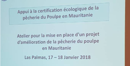 Atelier FIP 17-17 jan 2018 Las Palmas
